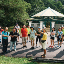 walking-tour