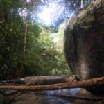 Taman Rimba river
