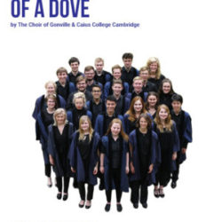 Poster_O for the wings of a dove